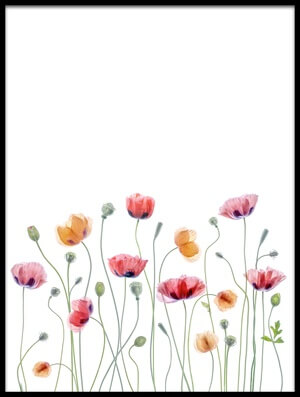 Buy this art print titled Papaver Party II by the artist Mandy Disher