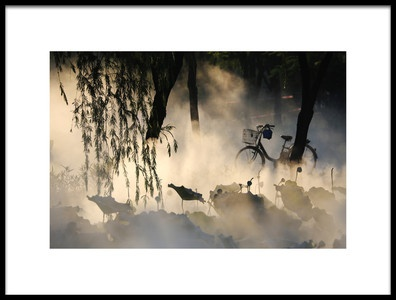 Art print titled Park by the artist Adam Wong