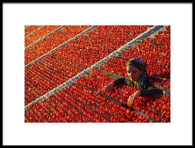 Art print titled Pepper by the artist ENES TOP