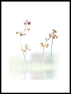 Art print titled Petite Fleur  by the artist Anna Cseresnjes