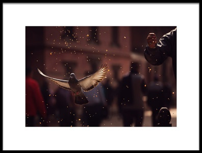 Buy this art print titled Pigeons In Patan Square, KathmanduNepal by the artist Dan Mirica