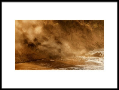 Buy this art print titled Plunging Into the River by the artist Mary Jiang