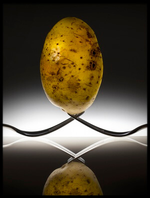 Buy this art print titled Potato-egg by the artist Wieteke de Kogel