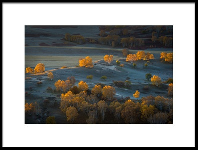 Art print titled Prairie Light by the artist C. Mei