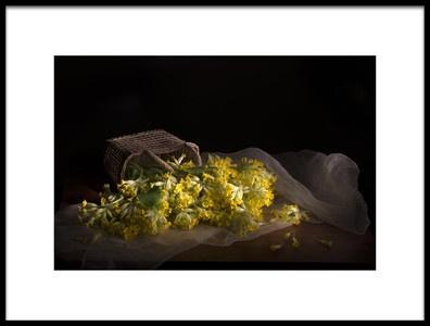 Art print titled Primula Veris by the artist dansiga