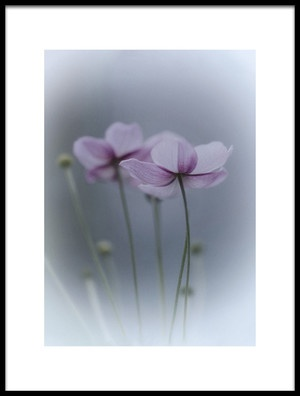 Buy this art print titled Purple Delight by the artist Purple Bamboo