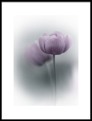 Buy this art print titled Purple Tulip by the artist Purple Bamboo