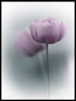 Art print titled Purple Tulip by the artist Purple Bamboo