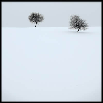 Buy this art print titled Quiet Winter by the artist Renate Wasinger