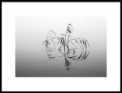 Buy this art print titled QuotAngelfishesquot by the artist Siv Wester