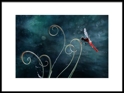 Art print titled Red Dragonfly by the artist Abdul Gapur Dayak