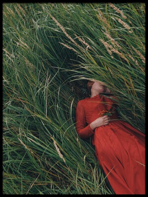 Buy this art print titled Red In Grass by the artist Olga Barantseva
