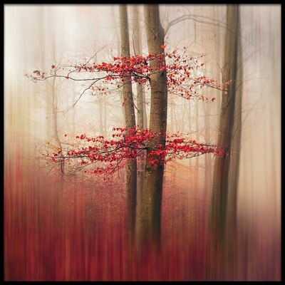 Buy this art print titled Red Leaves by the artist Leif Løndal