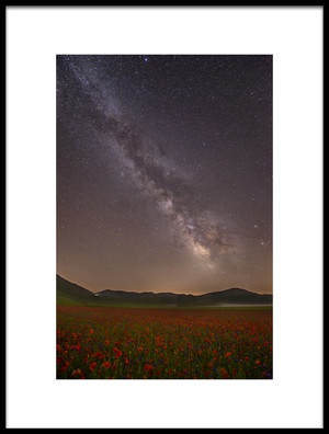 Art print titled Red Meadows by the artist Roberto Marchegiani