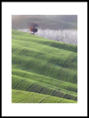Buy this art print titled Red Tree On Green Velvet by the artist Marco Bizziocchi