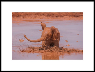 Art print titled Red Tsavo by the artist Valerio Ferraro
