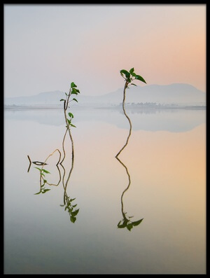 Art print titled Reflection of Life by the artist Pankaj Dhande