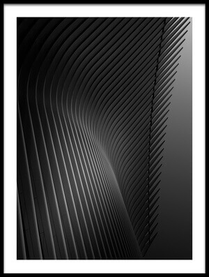 Buy this art print titled Ribbed by the artist Louis-Philippe Provost