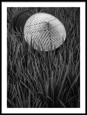 Art print titled Rice Fields In Bw by the artist Gloria Salgado Gispert