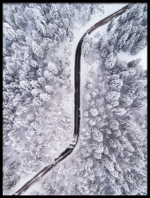 Buy this art print titled Road Through the Winter Forest by the artist Ales Krivec