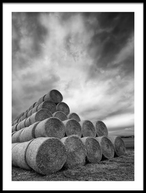 Buy this art print titled Rollers by the artist Piotr Krol (Bax)