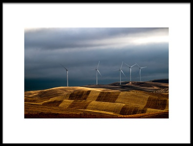 Art print titled Rolling Wheat Fields by the artist Charles Lai