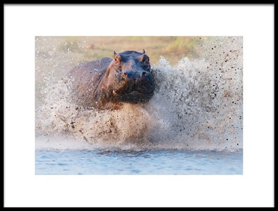 Art print titled Run for Life by the artist Cheng Chang