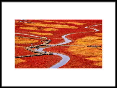 Buy this art print titled Salt Pond by the artist Tiger Seo