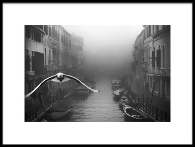 Art print titled Seagull from the Mist by the artist Stefano Avolio