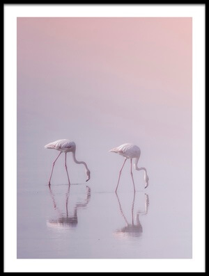 Buy this art print titled Serenity 3 by the artist Ahmed Thabet