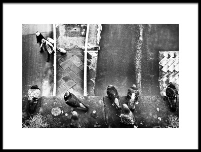 Buy this art print titled Seven Pigeons and Two Trolley by the artist franco maffei