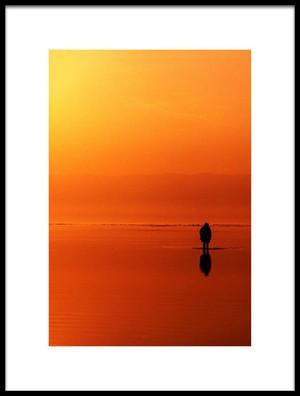 Buy this art print titled Shallow by the artist Hamed Khosroshahi