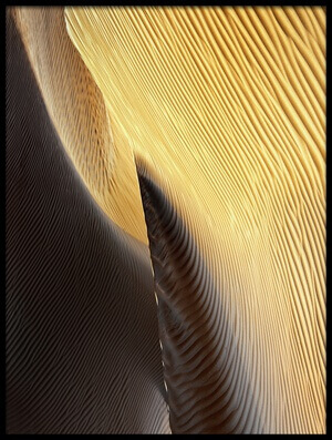 Art print titled Shapes of the Wind II by the artist Izidor Gasperlin