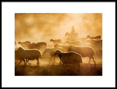 Art print titled Sheep Flock by the artist feyzullah tunc