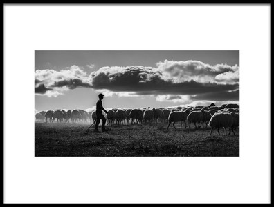 Art print titled Shepherd by the artist Yavuz Pancareken