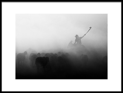 Art print titled Shepherd Herd by the artist feyzullah tunc
