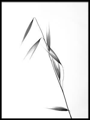 Buy this art print titled Siluetas by the artist Carlos Gonzalez