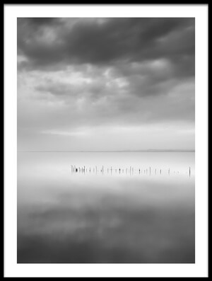 Buy this art print titled Sixty Shades of Gray by the artist George Digalakis