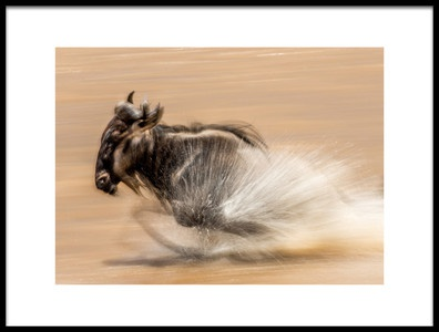 Art print titled Slow Shutter Wildebeest by the artist Jaco Marx