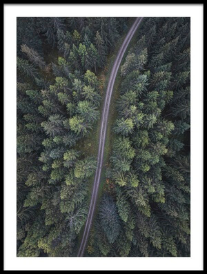 Buy this art print titled Small Road Through the Forest by the artist Christian Lindsten