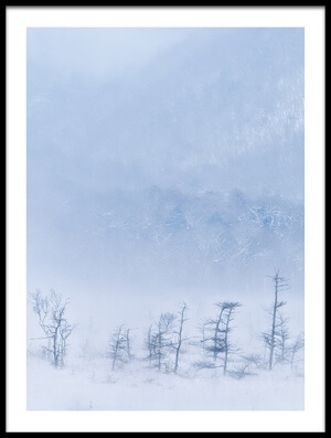 Art print titled Snowstorm and Young Trees by the artist Kouji Tomihisa
