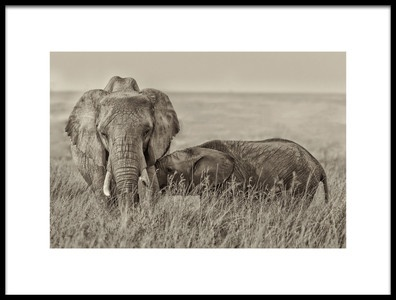 Art print titled Snuggling by the artist Henry Zhao