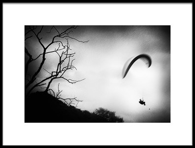 Art print titled Soaring Free by the artist Gustav Davidsson