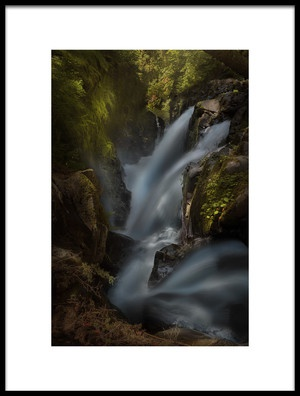 Buy this art print titled Sol Duc by the artist Louise Yu