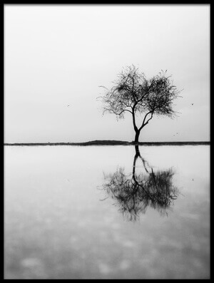 Buy this art print titled Solitude II by the artist Ali Ayer
