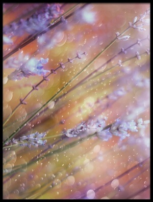 Art print titled Something Magical by the artist Delphine Devos