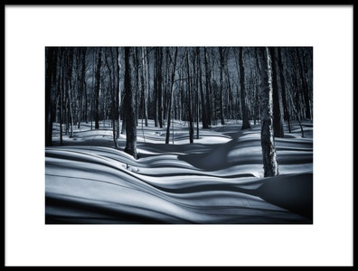 Art print titled Sousbois En Hiver by the artist Christian Duguay