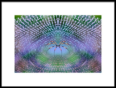 Art print titled Spider by the artist Thomas Thomopoulos