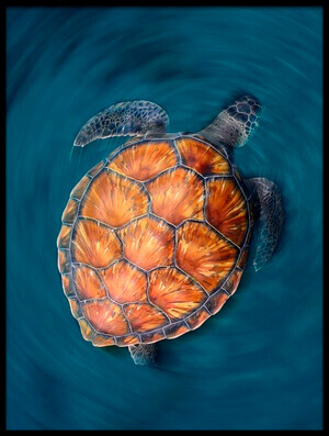 Art print titled Spin Turtle by the artist Sergi Garcia