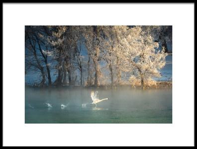 Art print titled Spirit of a Swan by the artist C. Mei